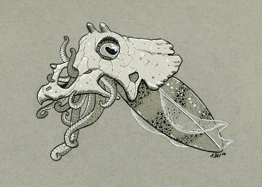 2016-inktober-triceratops-squid.jpg