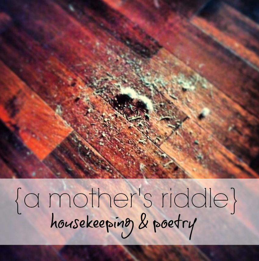 a mother's riddle title