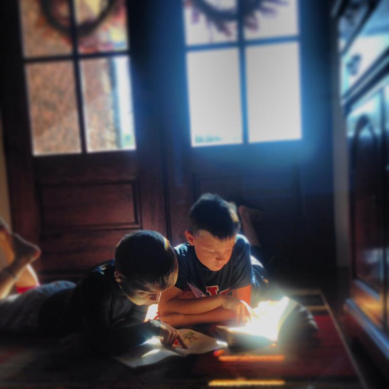 boys light reading 800
