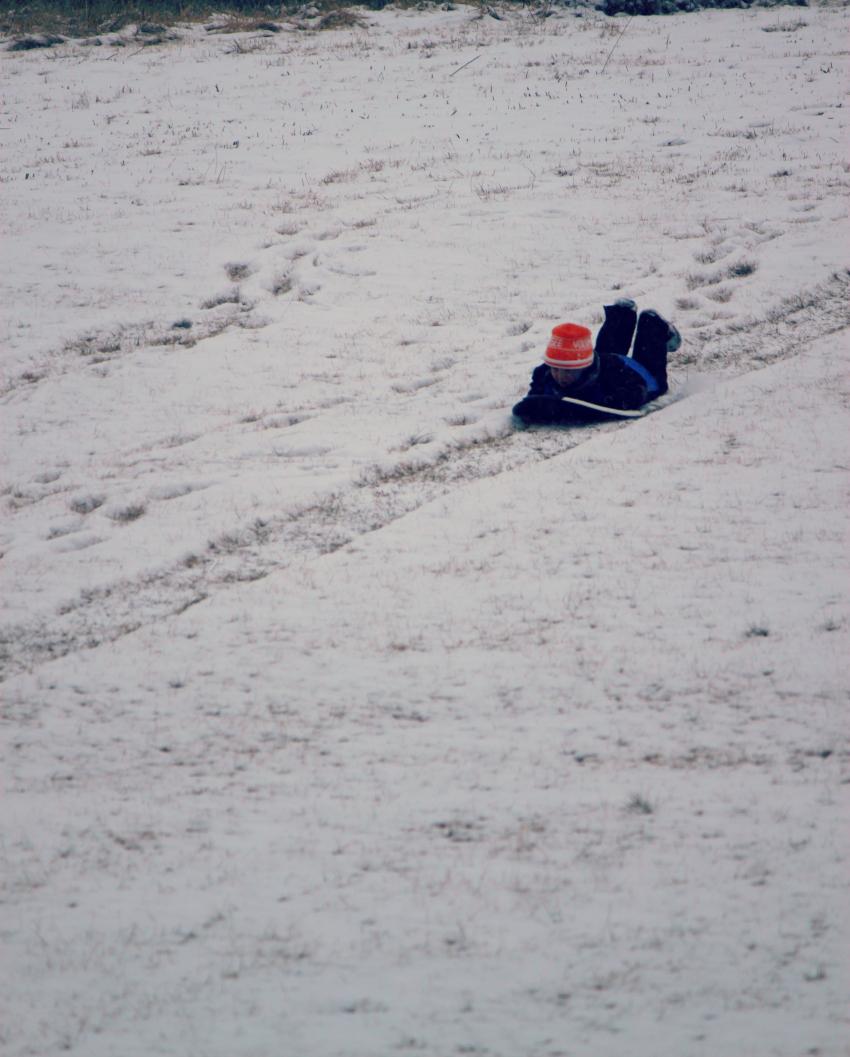 casey sled