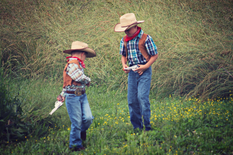 cowboy gun check