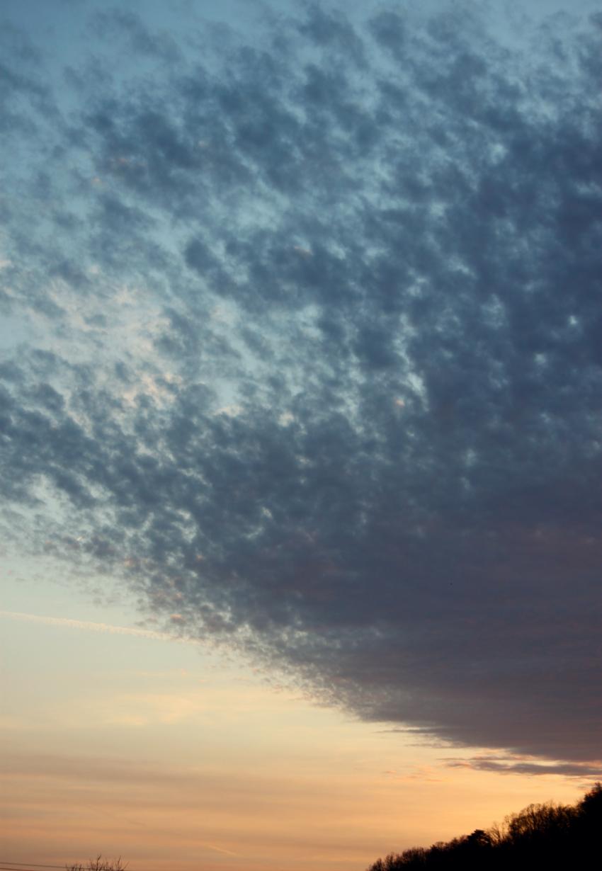 sky 2.png