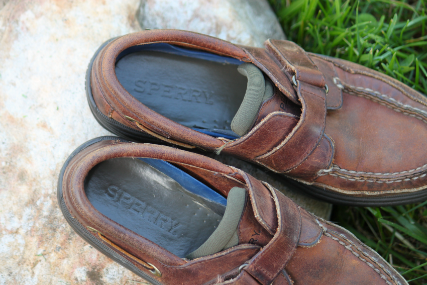 sperry label.png