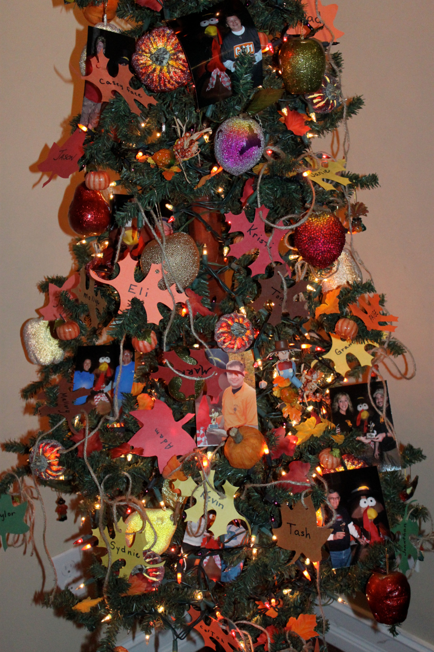tree close up done