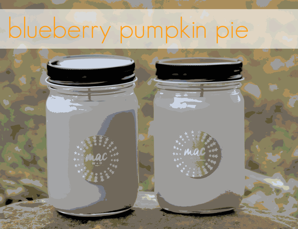 blueberry pumpkin pie.jpg