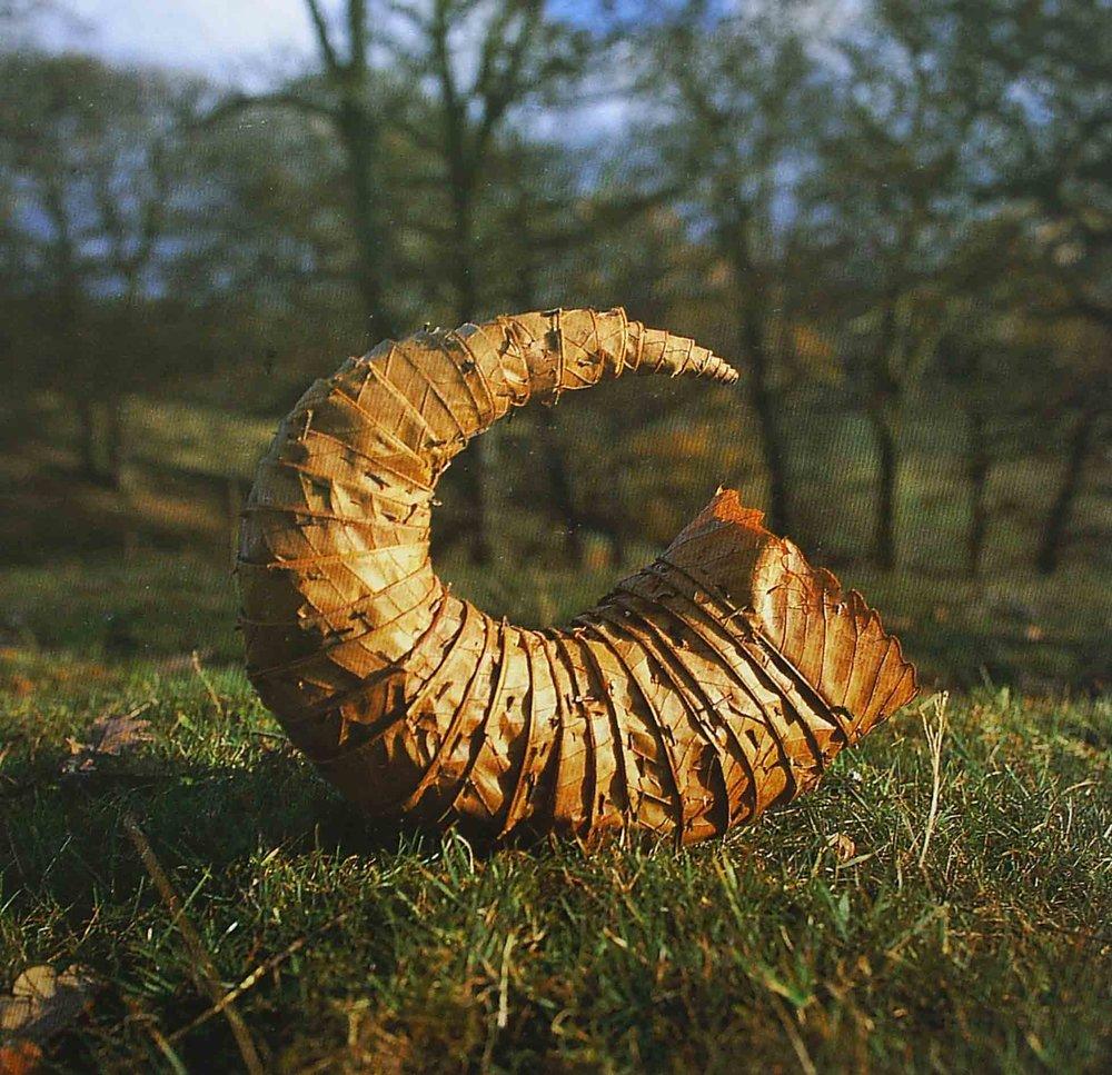gold autumn horn web.jpg