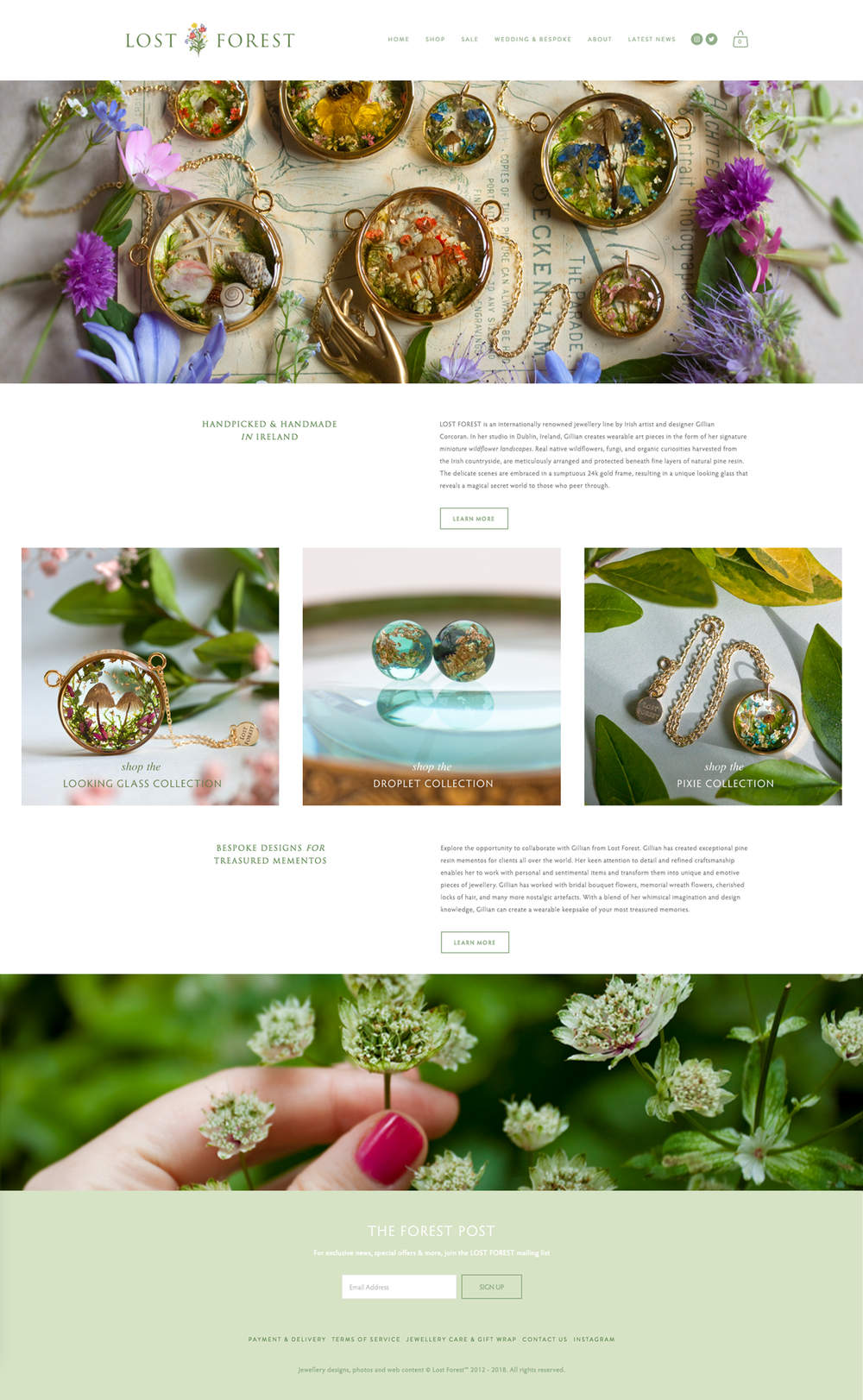 Lost Forest website design by Rachel Corcoran