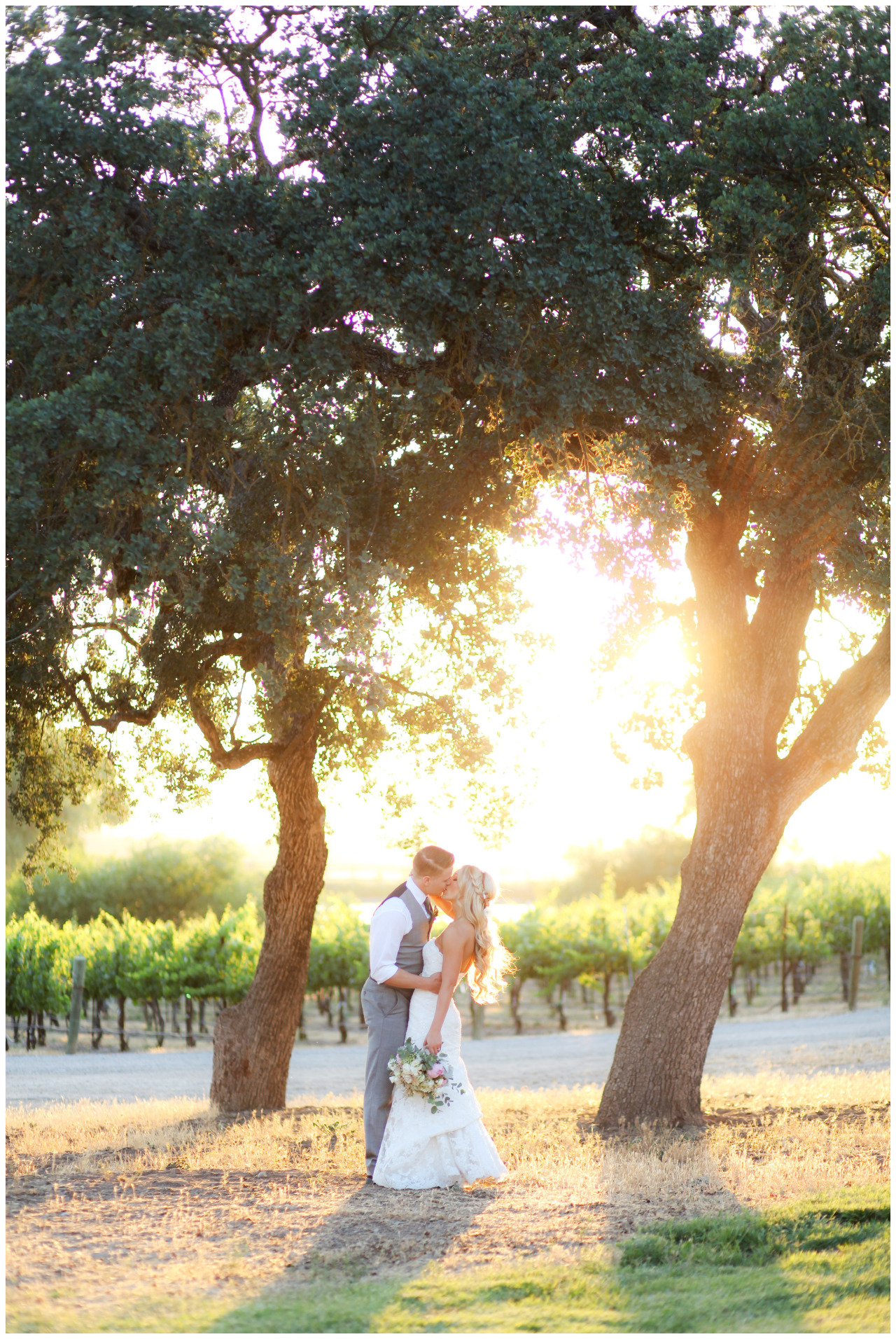 Yesterdays Paso Robles wedding was perfection. I can't wait to show it all!          ©bschwartz           www.bschwartzphotography.com