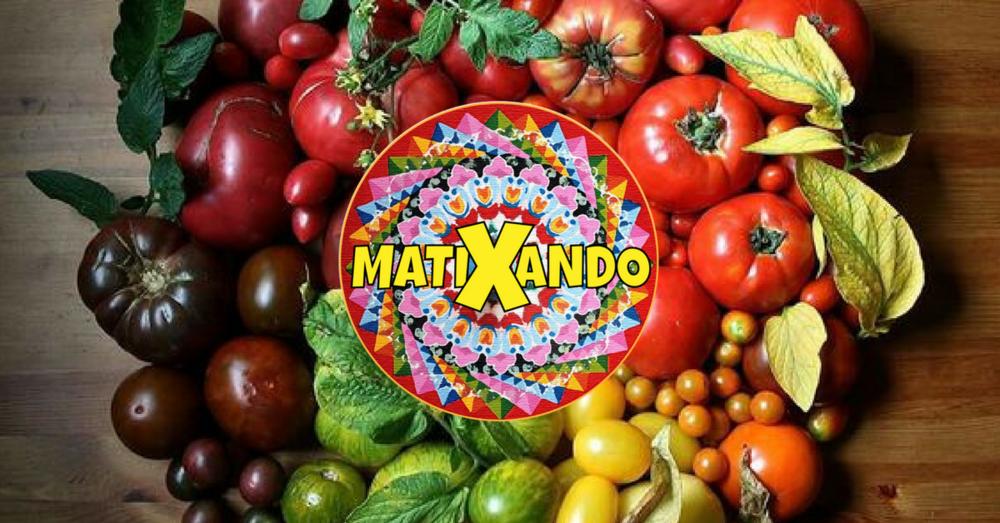 matixando farmers market.png