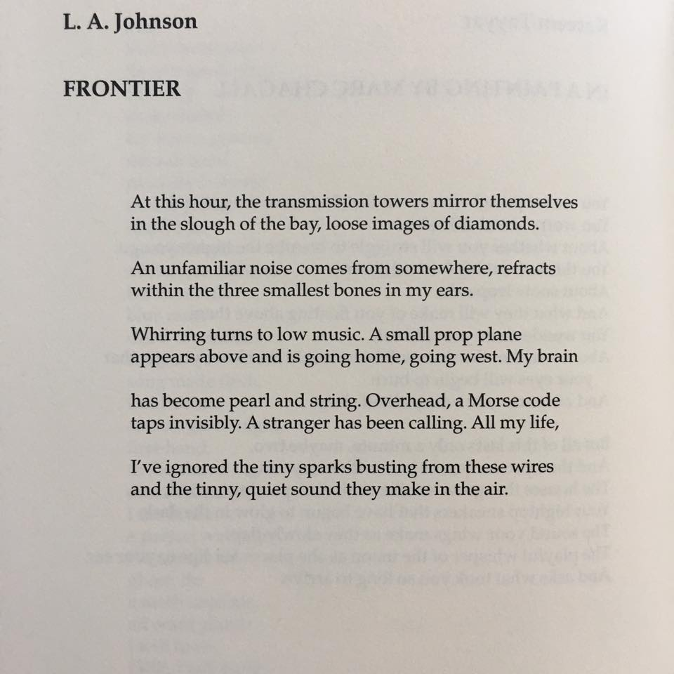 New Poem In The Alaska Quarterly Review L A Johnson