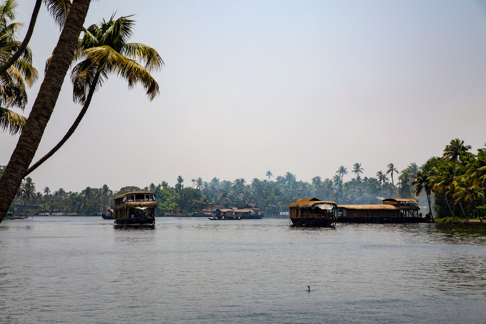 Canal houseboats in Alleppey, Kerala, India.