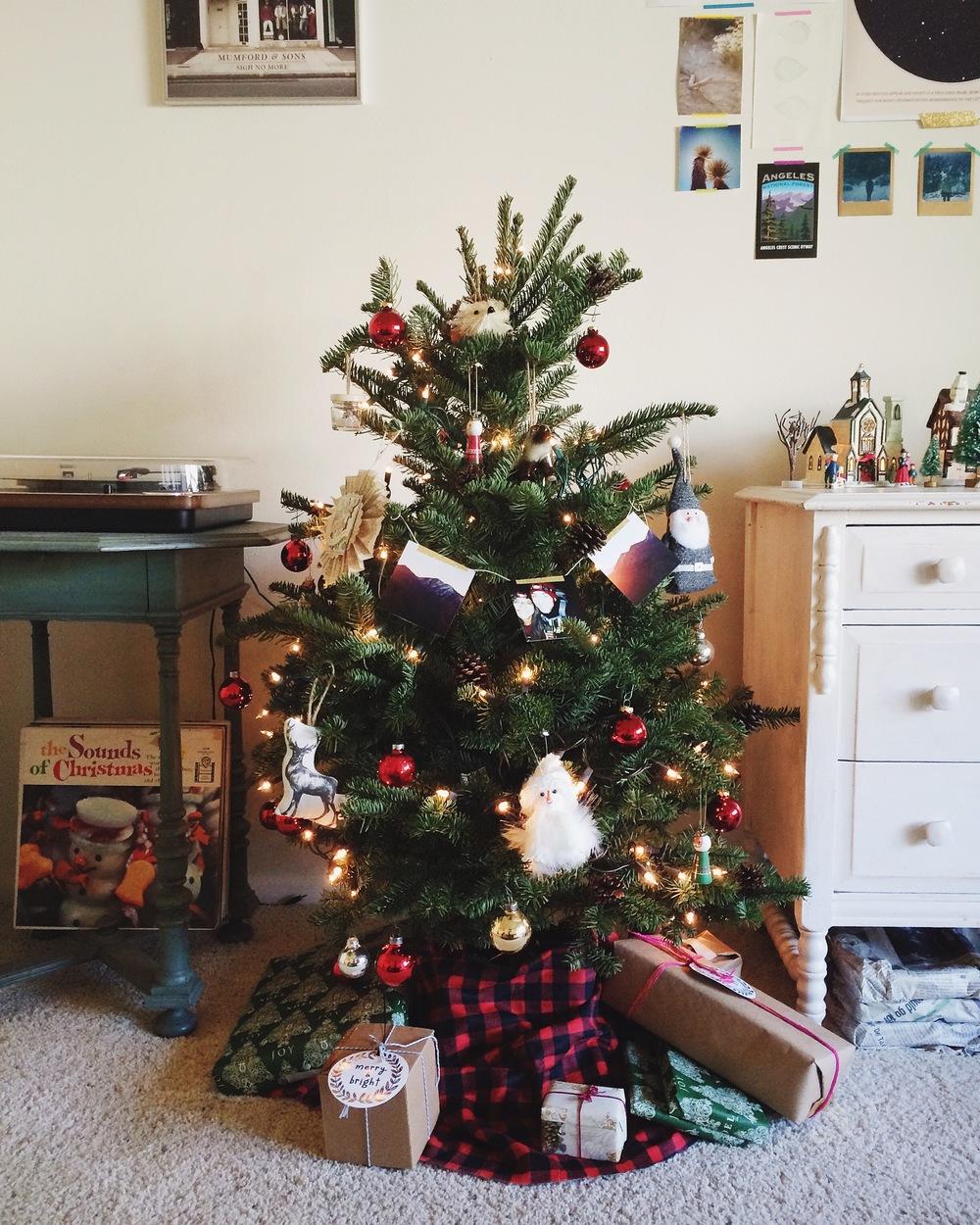 Photo Dec 13, 2 06 35 PM.jpg
