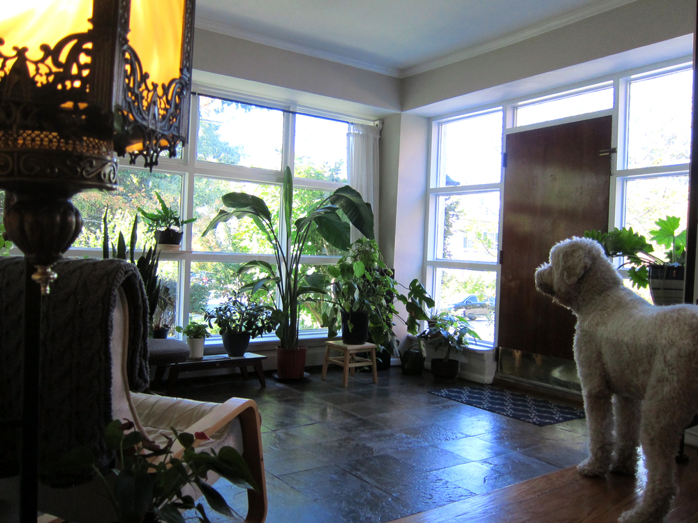 Sunroom2.jpg