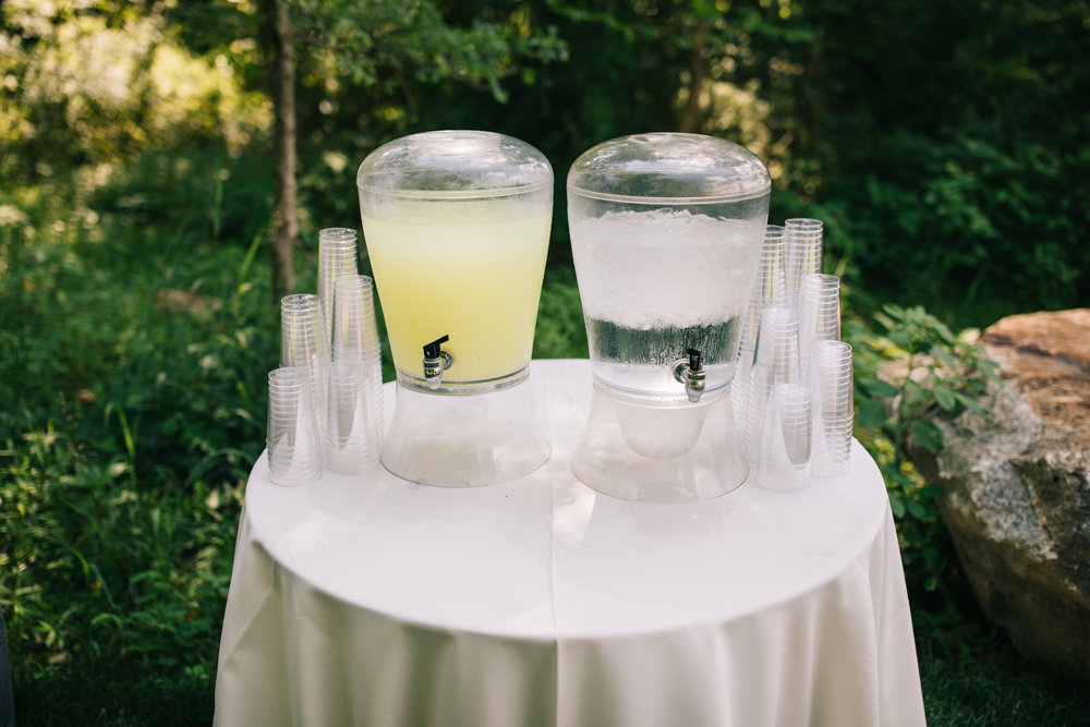 Brandywine Manor House wedding