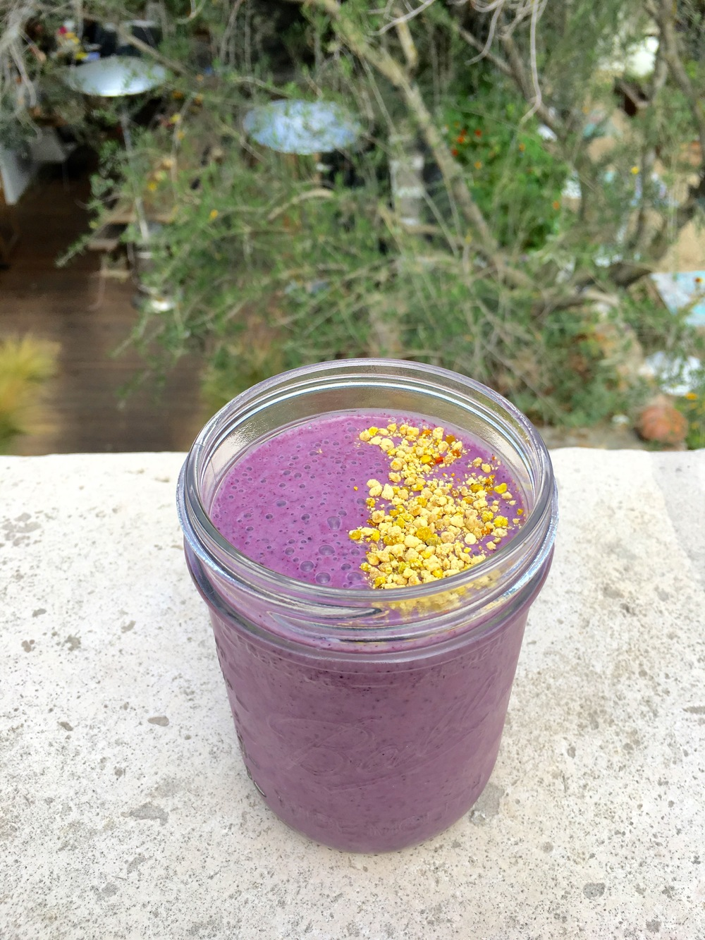 Blueberry bee // blueberries / bee pollen / hempseed / almond milk