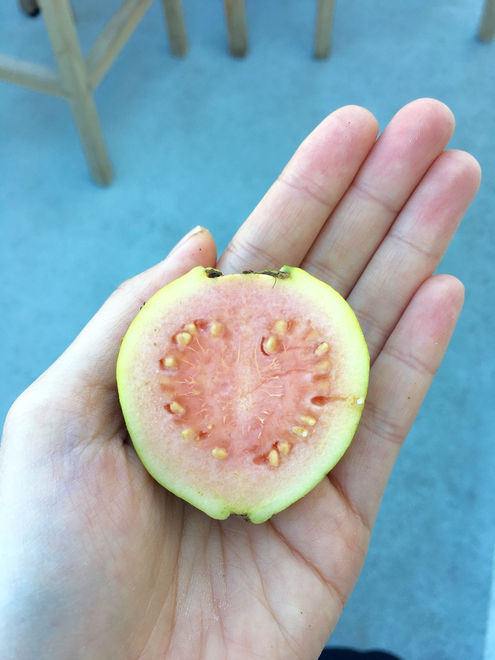 Beautiful pink guava!