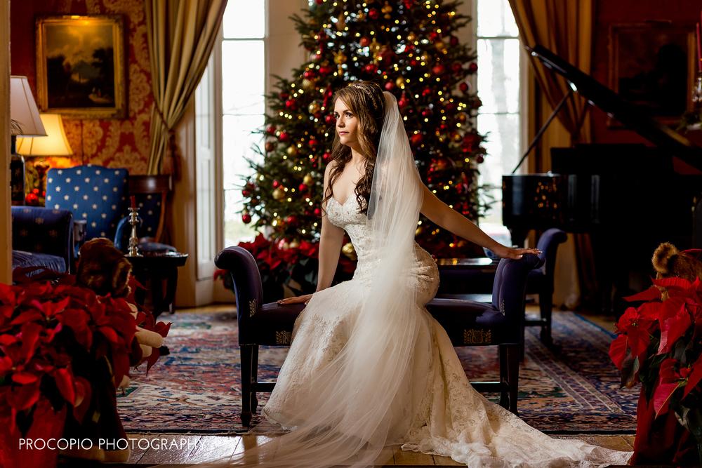 122715-Procopio Photography-DiBenedetto Wedding-Do not remove watermark-030.jpg
