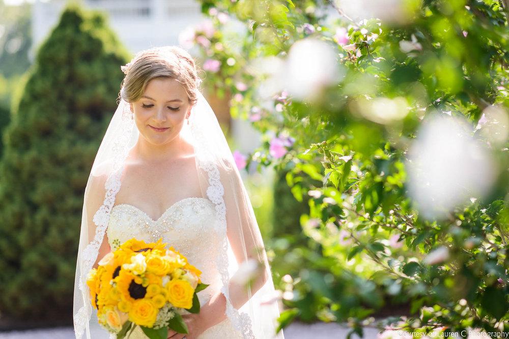 LaurenCPhotographyBarleyAzatWedding7-18-15-40.jpg