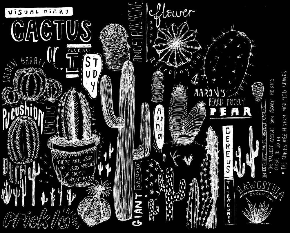 Peita-Blythe_Cactus-Sketch_Black_Web.jpg