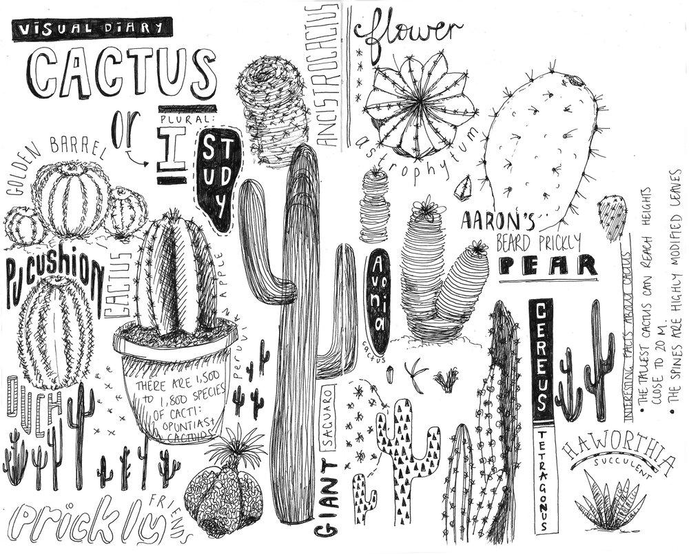 01. Cactus sketch .jpg