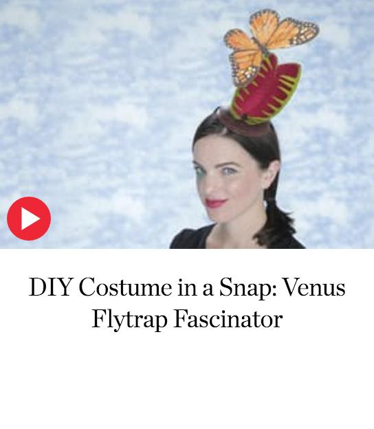 VenusFlytrap.png