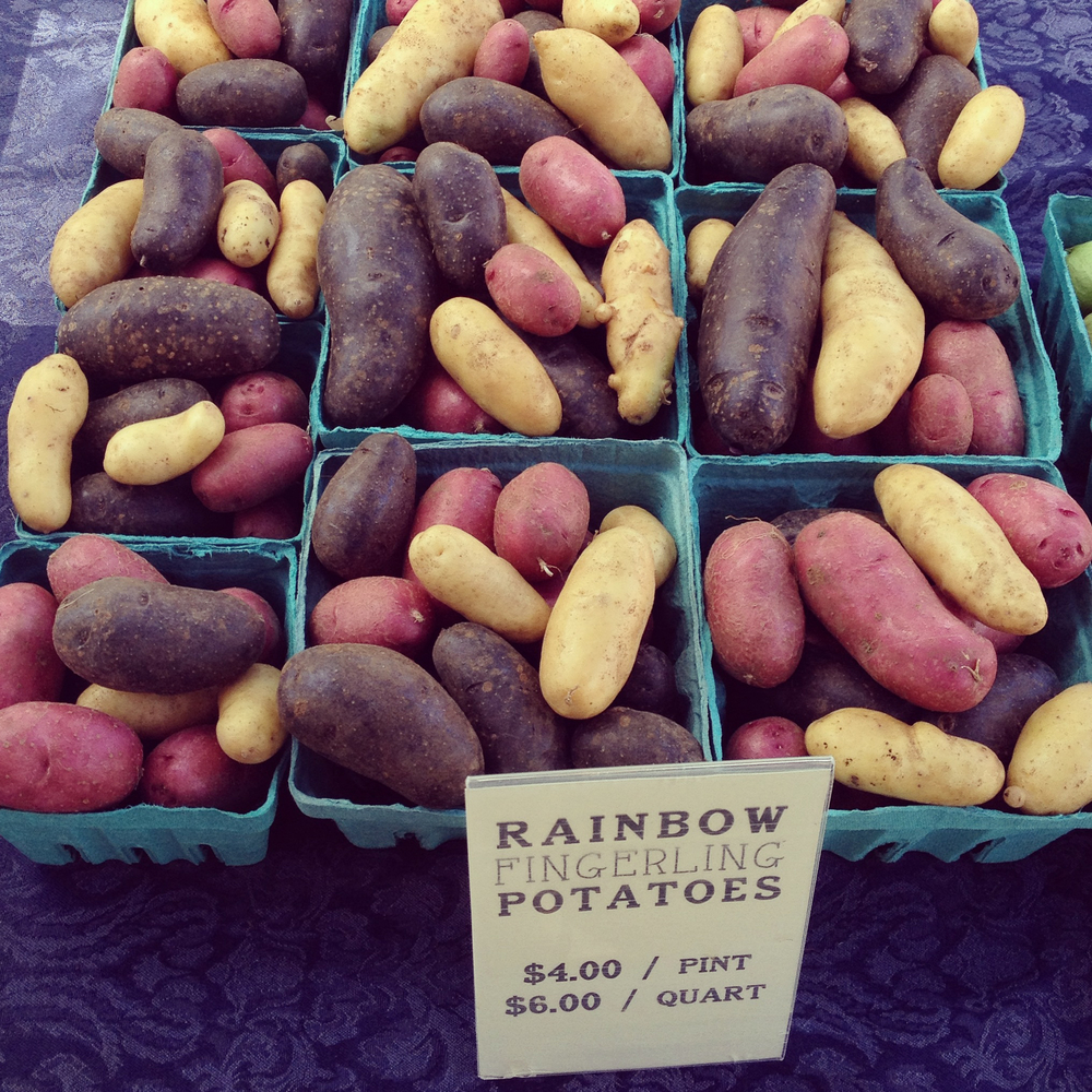 Colorful fingerling potatoes