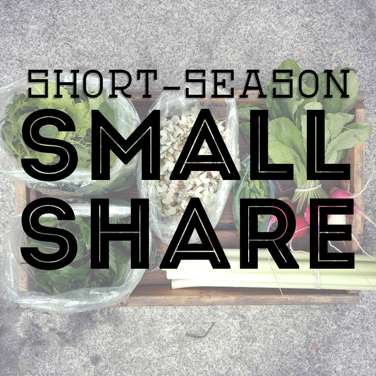 ss-smallshare.jpg