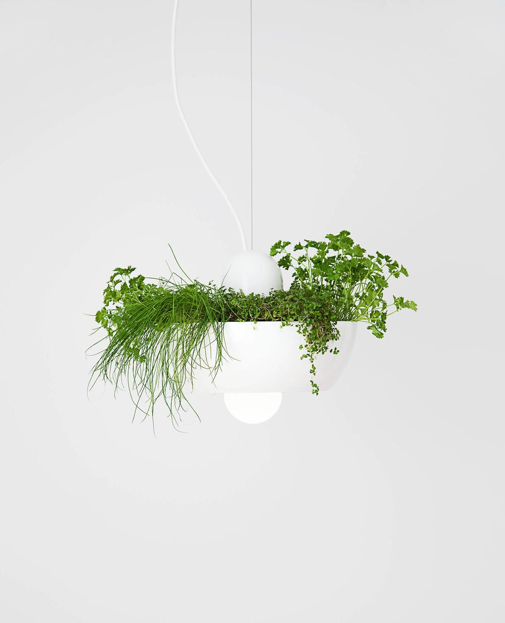 Well Light — Planter