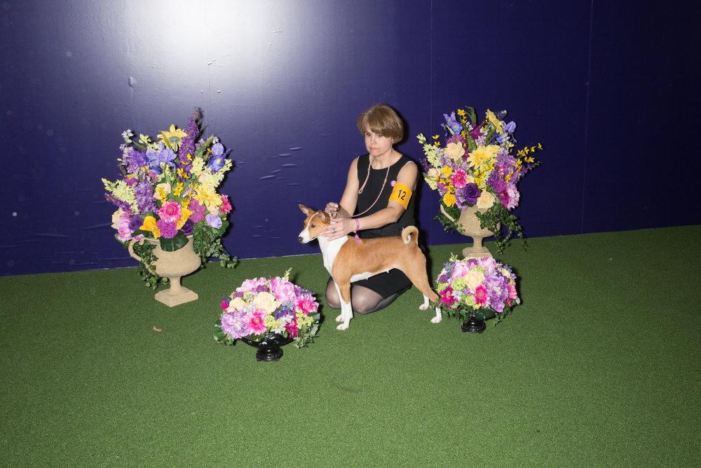 Dogs-1405.jpg