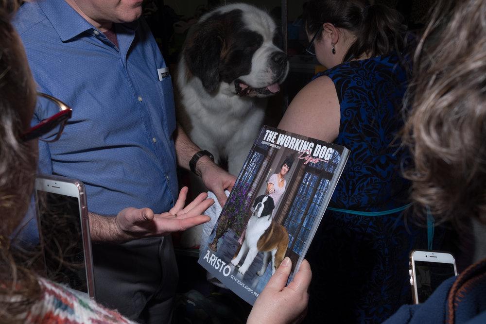 Dog-Show-4528.jpg
