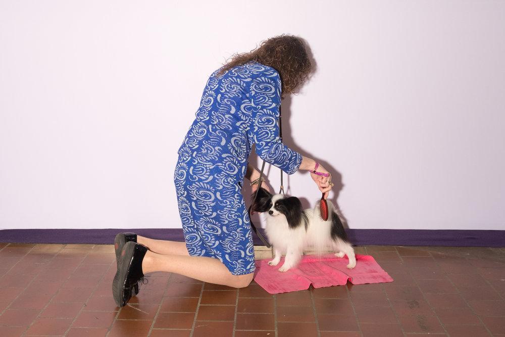 Dog-Show-4320.jpg