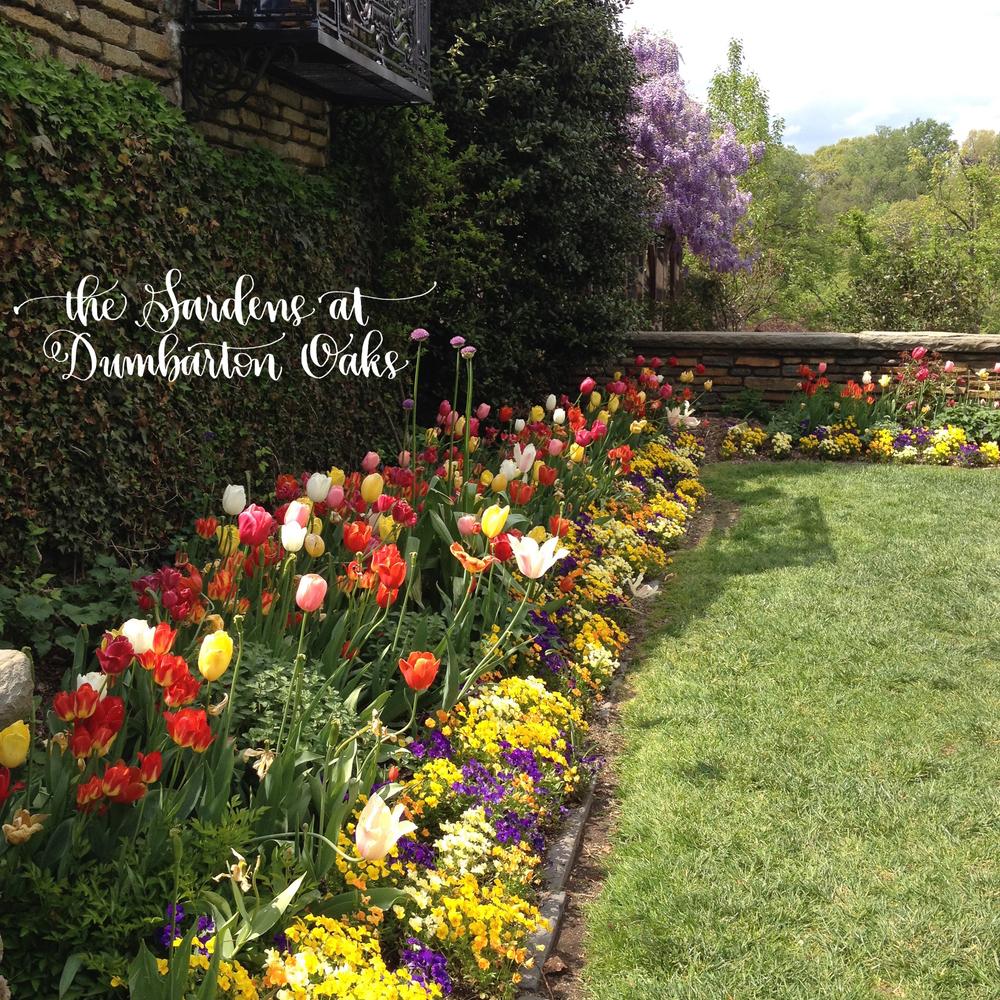 the Gardens at Dumbarton Oaks | RWS blog