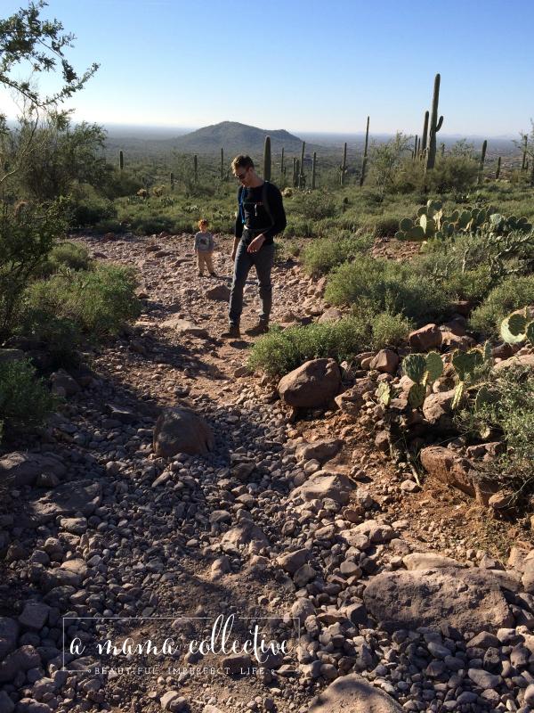 k and Ezra hike
