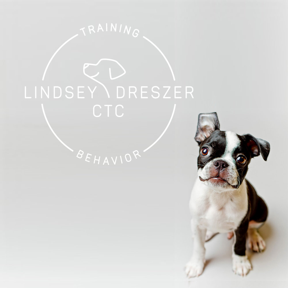 dog training logo.jpg
