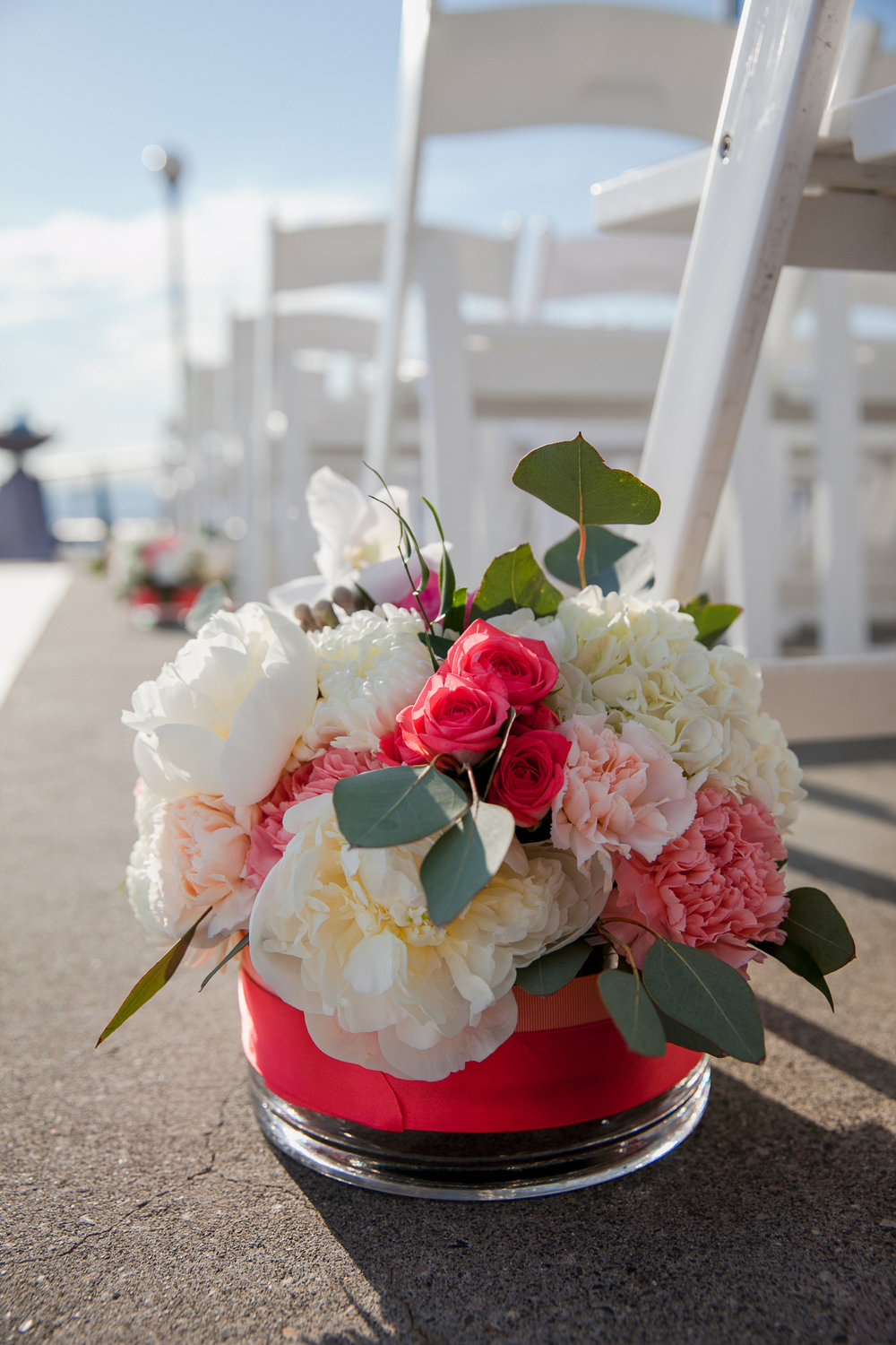 Sublime Stems | Red Sparrow Photography | Seattle Aquarium