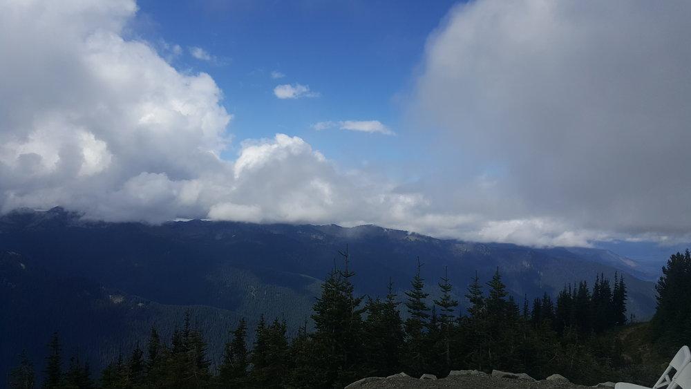 Sublime Stems | Crystal Mountain