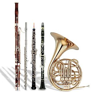 Instruments of the wind quintet (L-R: bassoon, flute, oboe, clarinet, French Horn) geneseo.edu