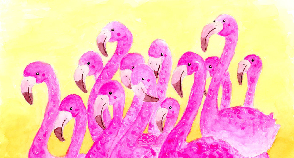 A flock of flamingos in the midst of a mating dance, June 2018. The original on sale in Santa Carla, Brunswick.