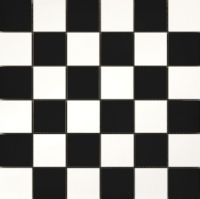 Times Square – Black and white checkerboard floor by Emser Tile – This is the tile that designer Tobi Fairley is installing in her foyer as a part of the year-long renovation of her home.  She is chronicling her project as the newest columnist of Traditional Home magazine.
