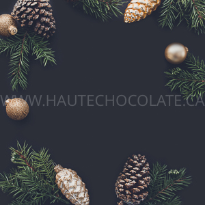 haute-chocolate-styled-holiday-stock-photos-mockups-21.jpg