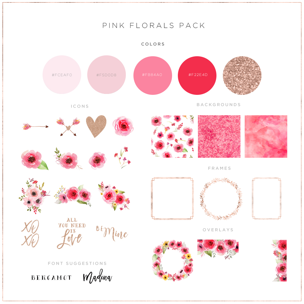 Feminine Pink Brand Color Palette with hints of rose gold glitter and hand painted watercolour florals exclusively from the Haute Stock Library