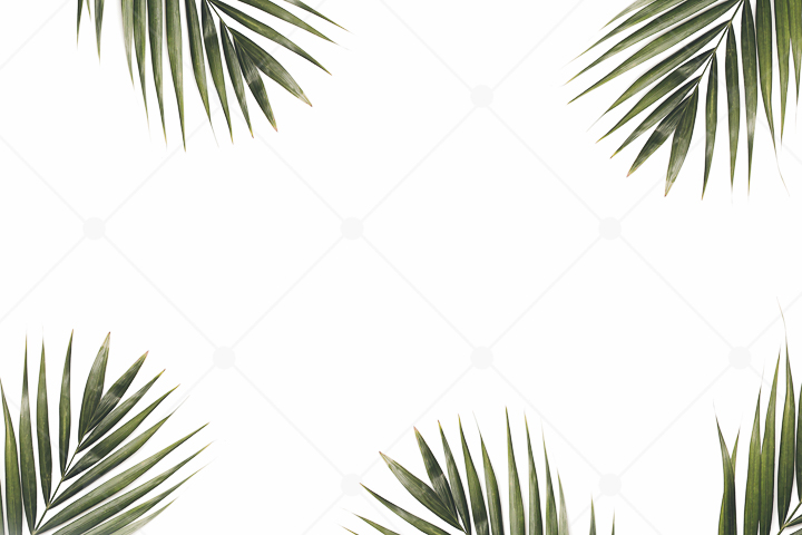 samples-haute-chocolate-styled-stock-photography-tropical-vibes-17.jpg