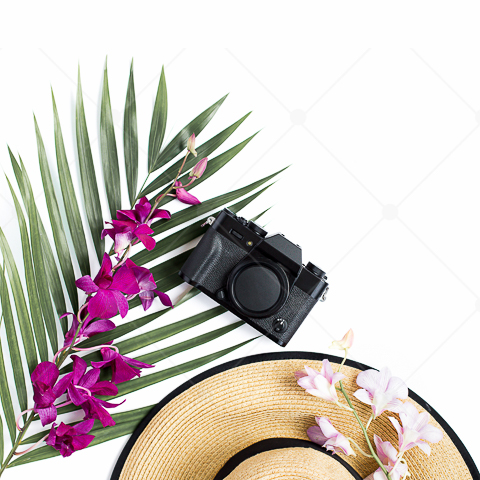 samples-haute-chocolate-styled-stock-photography-tropical-vibes-21.jpg