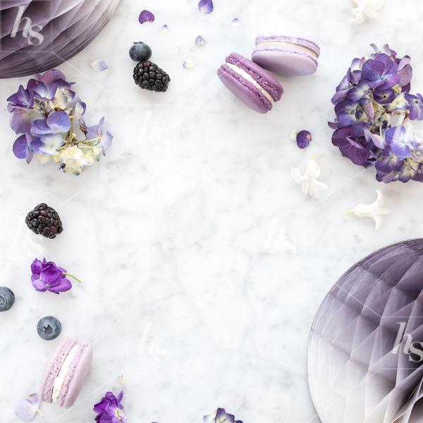 haute-stock-photography-ultra-violet-7.jpg