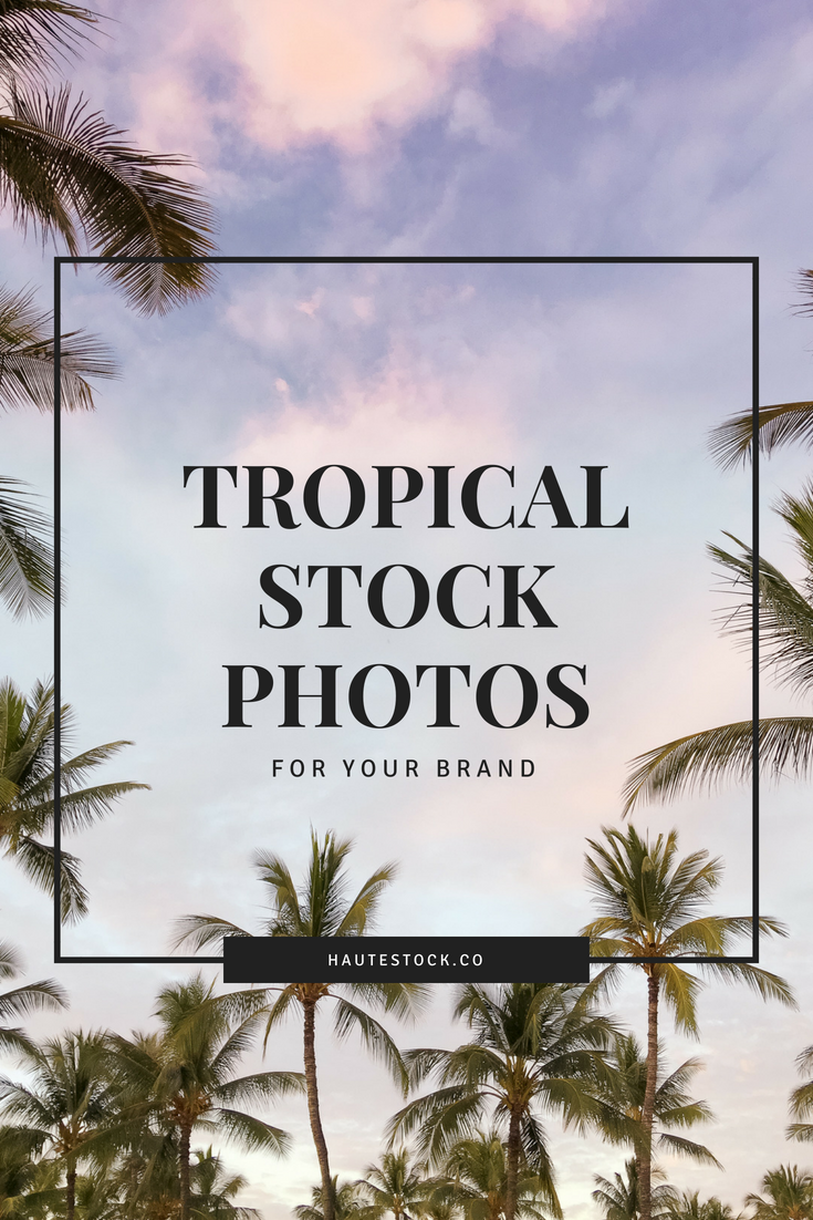 Tropical Beach Stock Photos for Modern Feminine Brands from the Haute Stock Library
