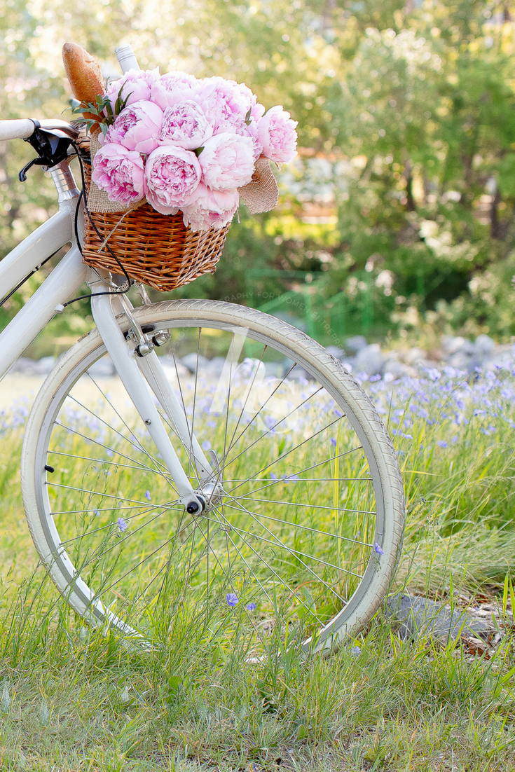 A vintage inspired summer picnic collection of images from Haute Stock.
