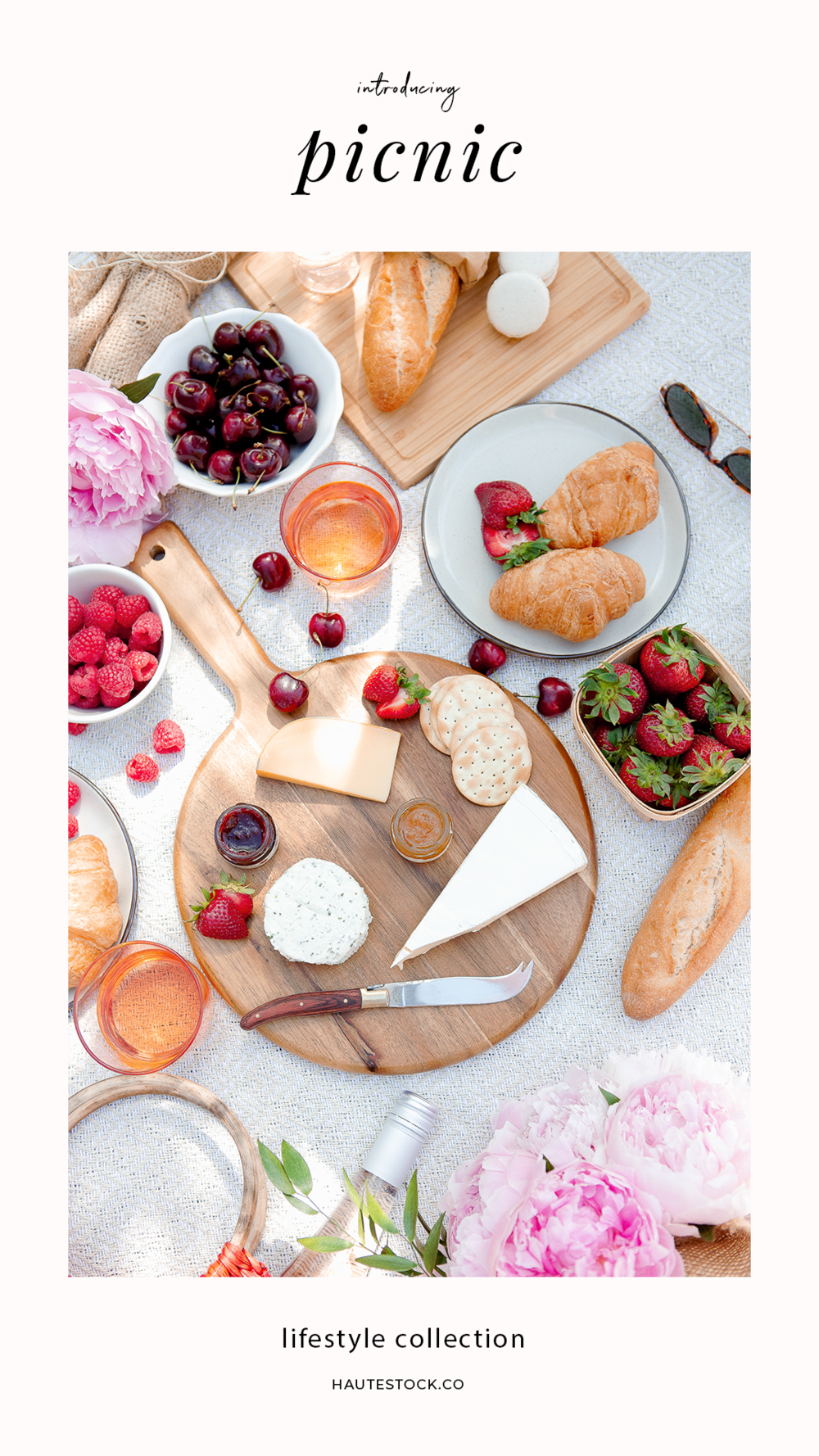 Haute Stock's lifestyle photos are perfect for bloggers, women business owners and creative entrepreneurs. The Picnic Collection features vintage inspired summertime vibes. Haute Stock Members get access to the entire collection. Click for the full preview!