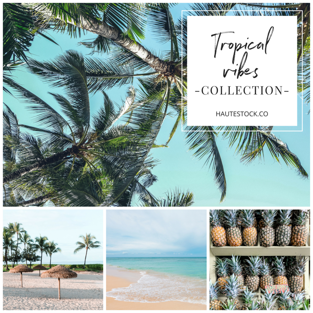 Haute Stock photography - Tropical Vibes Collection