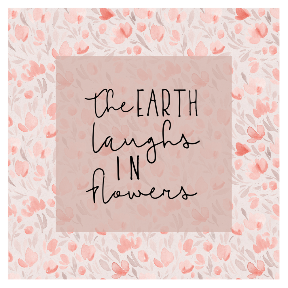 How to create unique graphics with design elements. This square graphic is perfect for social media and uses Haute Stock's graphics packs elements — like the floral pattern background and hand lettered quote — to create a simple, custom visual.