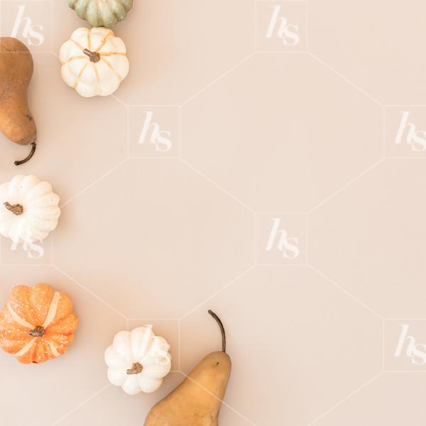 haute-stock-photography-falling-leaves-final-11.jpg